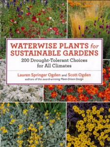 waterwise-plants